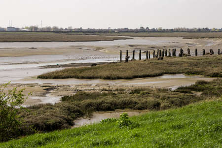 photo of low tidal grounds in Essex, UK Stock Photo - 100634654
