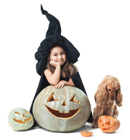 little witch with a dog wondered around the pumpkin photo