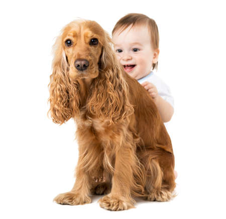 hides: joyful baby hides behind the dog Stock Photo