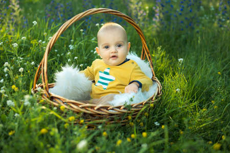 small smiling child in a sweater sitting in a basket on the grass