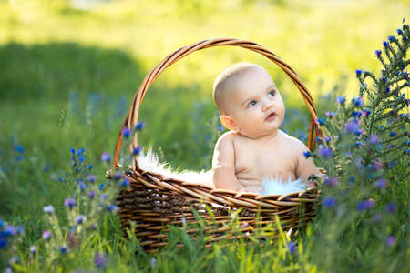 small smiling child looking sideways, sitting in a basket on the grass Stock Photo