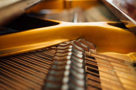 the internal parts of the grand piano strings