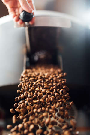 The flow of coffee beans from hand open flap of the cooling mixer of the roasting machine, front view 免版税图像