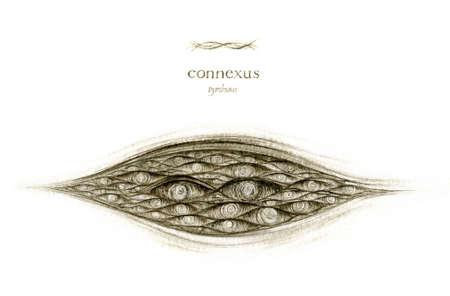 connesus - page from SENTENTIA SUBEXTRA 版權商用圖片