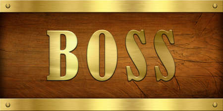 Vintage Door Plate, Boss