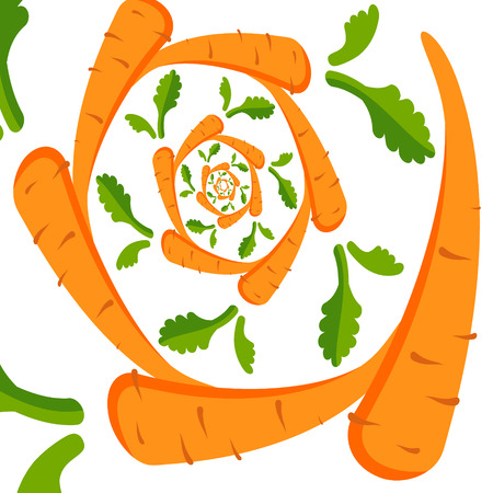 Vector background with orange carrots on a white background. Twisted spiral. Vector illustration
