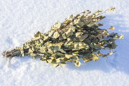 Birch brooms for Russian sauna. On snow in winter