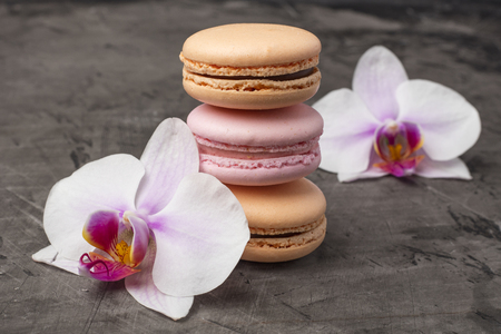 Delicious, colorful cookies macarons. Orchid flower as decoration. Dark background Stock Photo