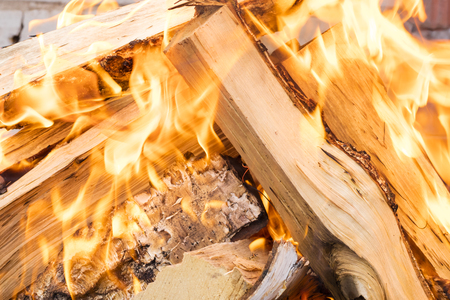 Closeup of a flame at a picnic. Fire, firewood