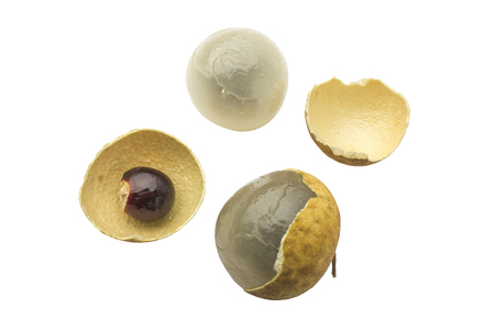 Longan fresh (Dimocarpus Longan) and Peel show the white meat with black seed isolated on white background
