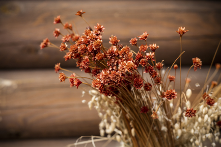 Old dry flowers, dried herbaceous reed grass, wheat against a wall of wooden logs