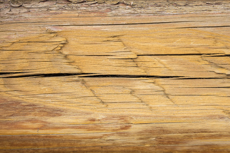 The texture of the dried log. Background
