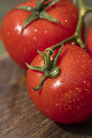 Red tomatoes with water drops, close-up Imagens