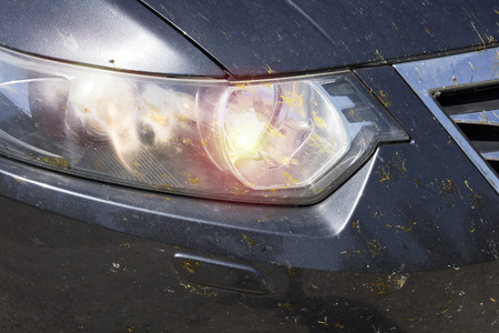 The headlights of the car in spots from insects, beetles, mosquitoes, butterflies. Close-up