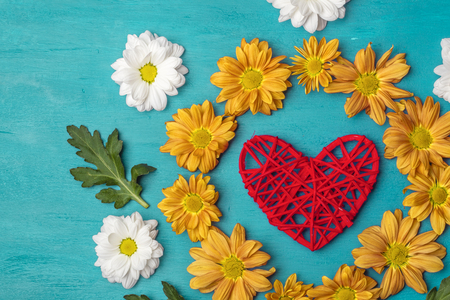 Flowers of chrysanthemum with a red heart with copy space. Turquoise background