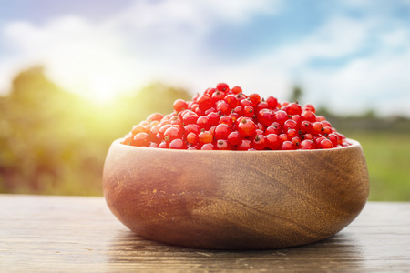 Ripe red currant in a wooden plate on a table in the garden. Sun light 版權商用圖片