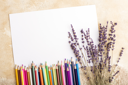 Mock up of blank sheet, colored pencils and branches of lavender on the table. Place for your design. View from above Stockfoto