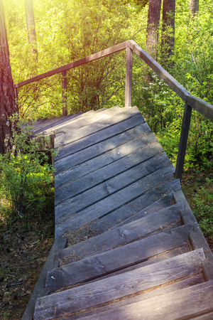 Old wooden path on the descent from the mountain through the forest. Warm summer day