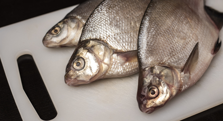 Fresh bream fish on a plastic cutting board, white. Close up Stock Photo - 123717368