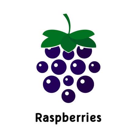 dark raspberry on a white background. Logo. Vector illustration 일러스트