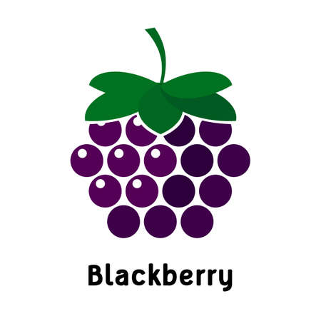 blackberry logo on a white background. Vector illustration