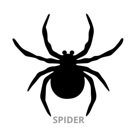 Spider silhouette. spider sign on white background. Isolated object for web and application. Vector, illustration Vektorové ilustrace