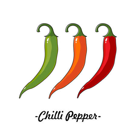 Three chili peppers of different colors on a white background. Vector, illustration