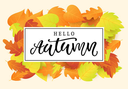 Hello autumn banner template