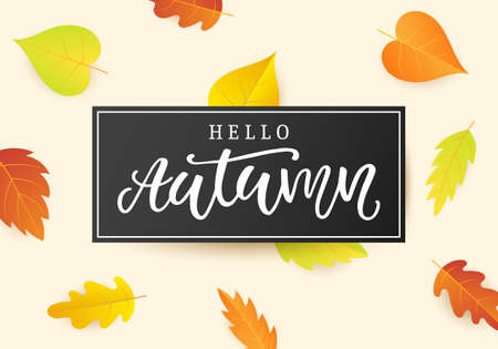 Hello autumn banner template. Fall seasonal calligraphy