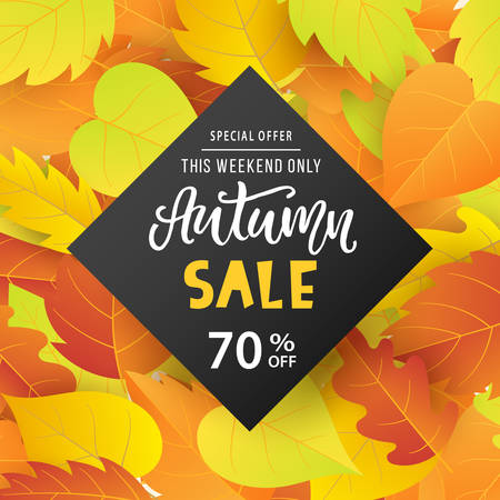 Autumn sale banner template with bright colorful fall leaves