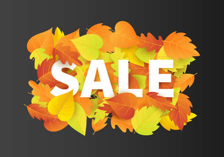 Autumn Sale Fashionable Banner Template with Colorful Fall Leaves on black background Illustration