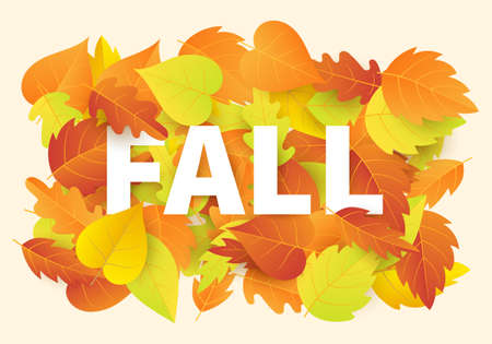 Fall banner template with bright colorful autumn leaves. Illustration