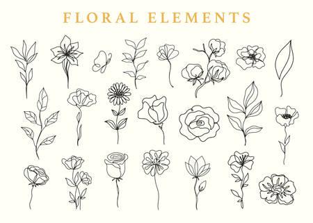 Floral elements set, botanical drawings Illusztráció
