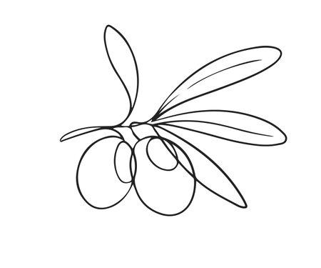 One line drawing olives Ilustrace