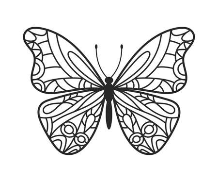 Butterfly hand drawn doodle