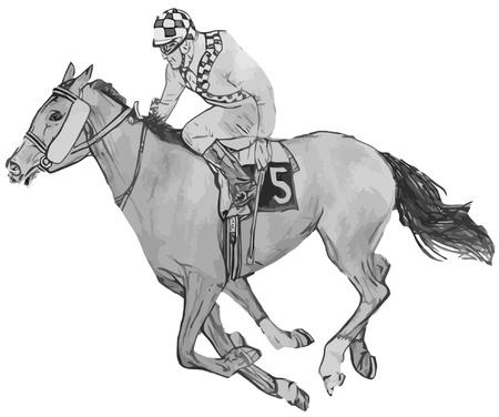 caballos corriendo: Caballo y jinete de vectores Vectores