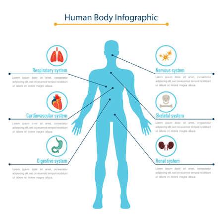 Human body infographic concept, flat vector illustration Çizim