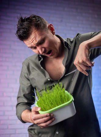 a man holds a seed germinator with growing green wheat and scissors 版權商用圖片 - 157768338