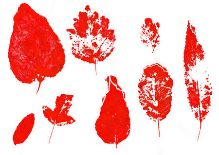 dry leaves: Set of red stamped dry leaves. Collection of hand-drawn leaves. Stock Photo