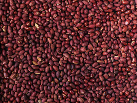 closeup of redskin roasted peanuts. Shot from above Stock Photo