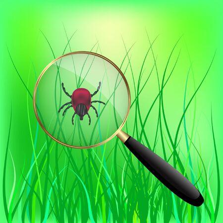encephalitis mite on the grass. vector illustration.
