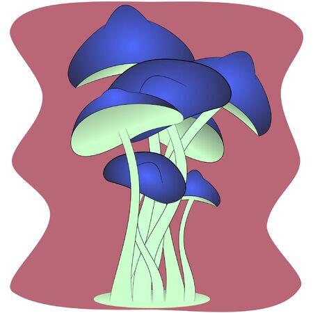 magic beautiful mushrooms cartoon vector illustration