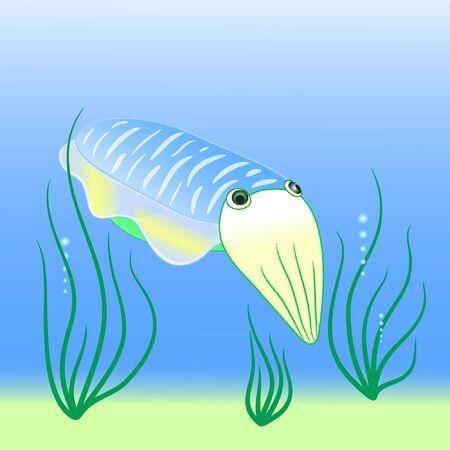cuttlefish cute cartoon vector illustration. Ilustrace