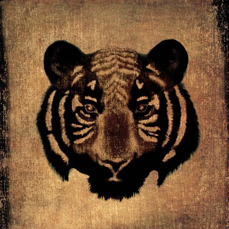 Grunge tiger face abstract background photo