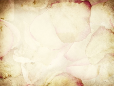 Rose petals, grunge paper background texture  Stock Photo