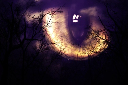 Scary monsters eye watching forest at night