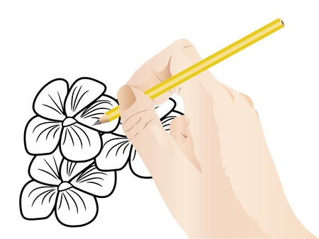 busyness: Illustration of hand is drawing sketch of flowers  Illustration