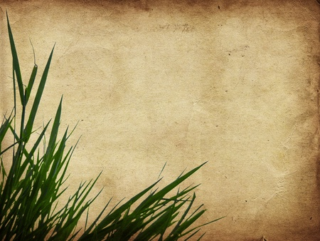Green grass on old grunge antique paper texture Stock Photo