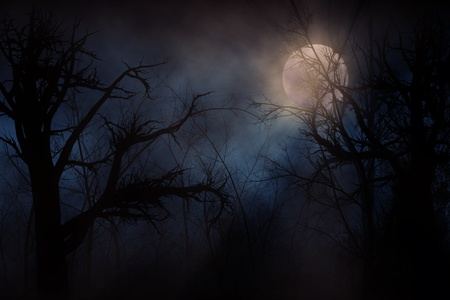 Illustration of night forest alight with bright moon in clouds Stock Photo