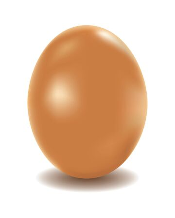 chicken and egg: Large chicken egg of brown color on a white background  Illustration